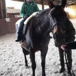 Ricky bei der Pferdetherapie